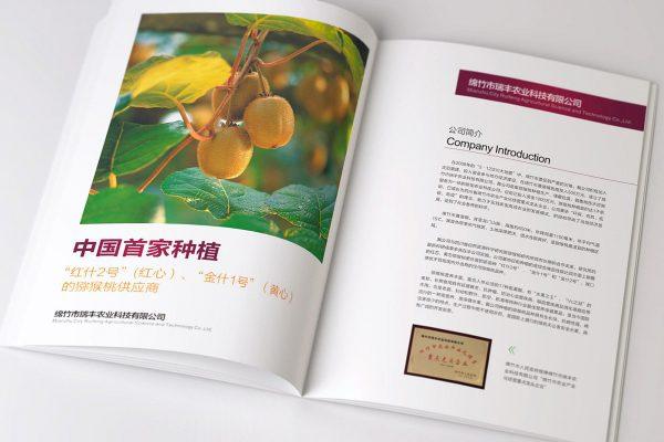 成都猕猴桃画册设计
